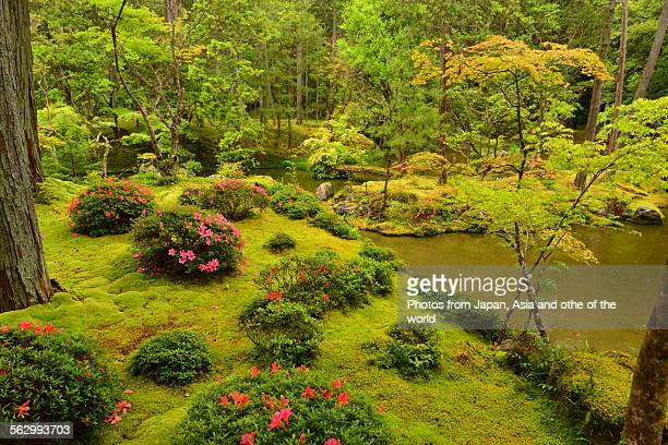 Landscape Garden of Saiho-ji Temple, Kyoto