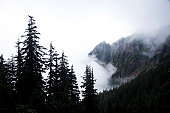 A landscape image of a foggy mountain scene.