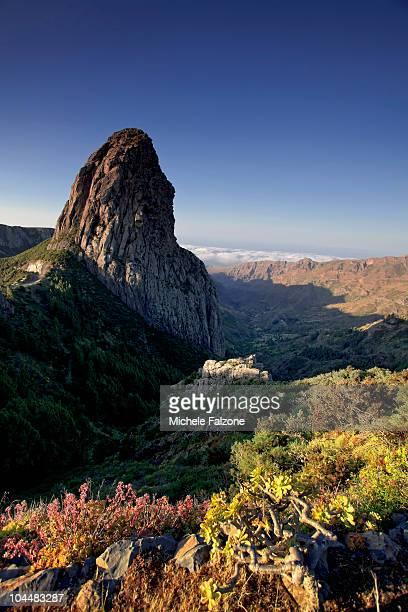 Landscape in Garajonay National Park, La Gomera