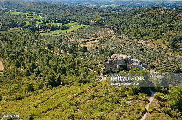 landscape in south of France