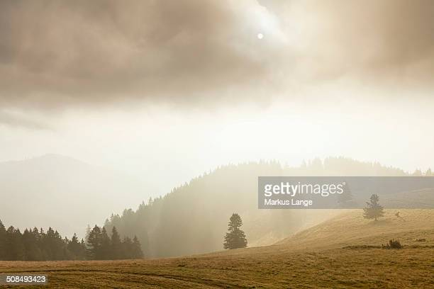 Landscape in the mist, Belchen, Black Forest, Baden-Wurttemberg, Germany