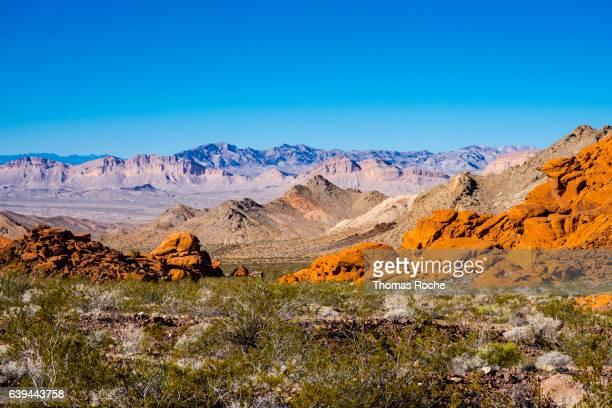 Landscape in the Mojave in Nevada