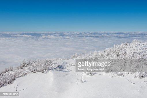 Landscape in winter,korea : Stock Photo