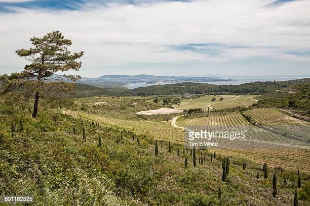 Landscape near Alacati, Turkey