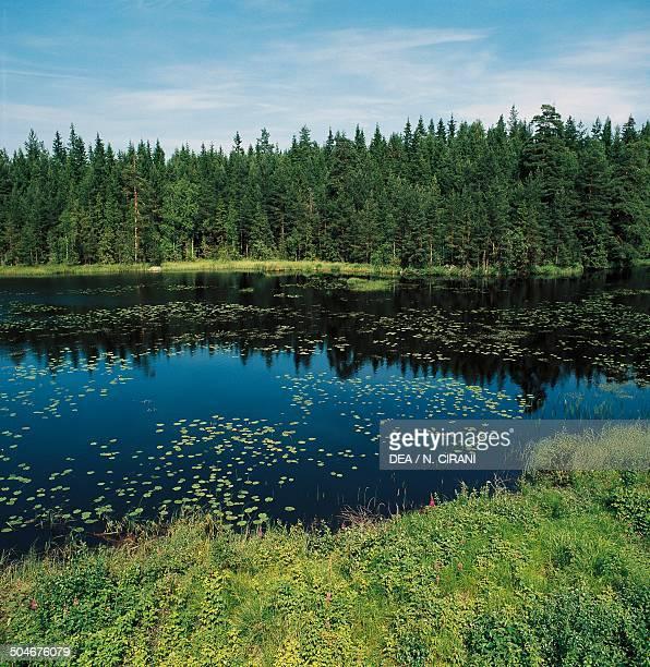 Landscape near Karlskrona Sweden