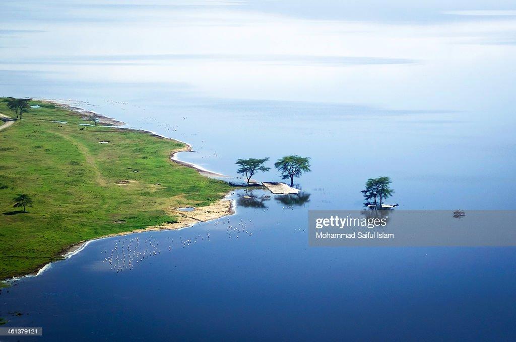 Landscape of Africa [Lake Nakuru]