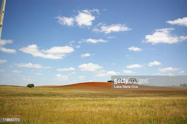 Landscape of Alentejo