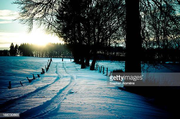 Landscape of Ardennes in Belgium