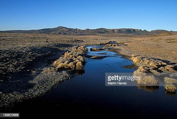 Landscape of Blue-winged Goose habitat, Wed River in Bale Mountains National Park, Ethiopia