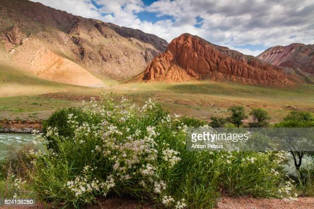 Landscape of colored mountain near Kokemeren river, Kyzyl-Oi, Kyrgyzstan