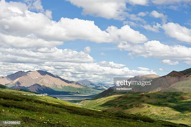 Landscape of Denali