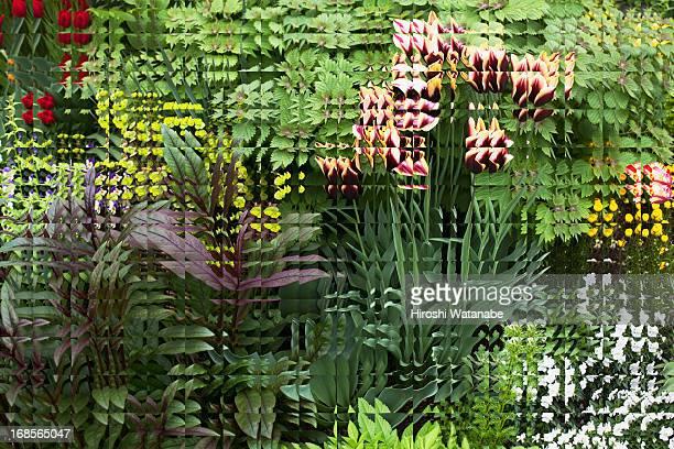 Landscape of discontinuous pattern