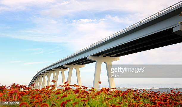 landscape of flowers under Sanibel Bridge in Florida USA