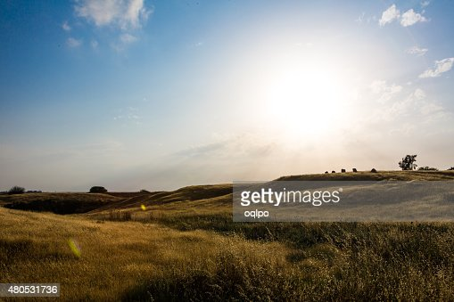 landscape of green hills : Stock Photo