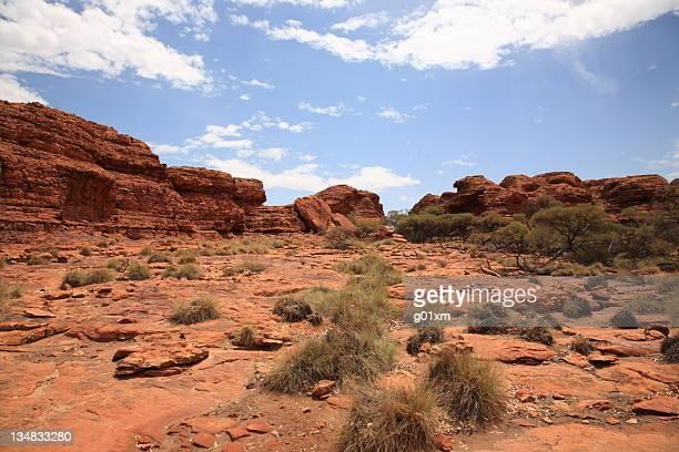 Landscape of kings canyon