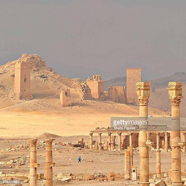 CONTENT] Landscape of Palmyra roman ruins