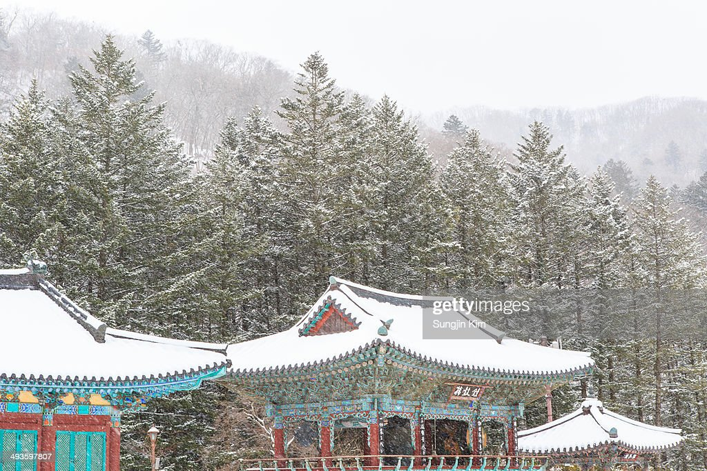 Landscape of snow-covered temple