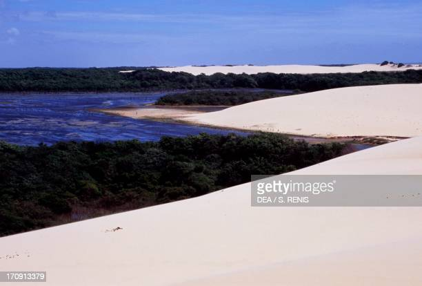 Landscape of the nature reserve located at the mouth of the Parnaiba River Caju Island State of Maranhao Brazil