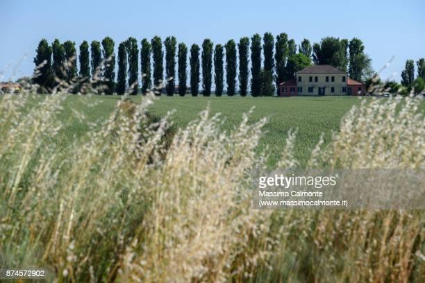 Landscape of the Polesine countryside near the Po Delta in Adria town area