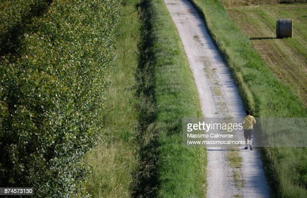 Landscape of the Polesine countryside near the Po Delta