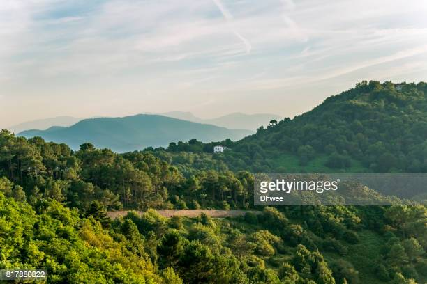 Landscape Of Trees And Mountains