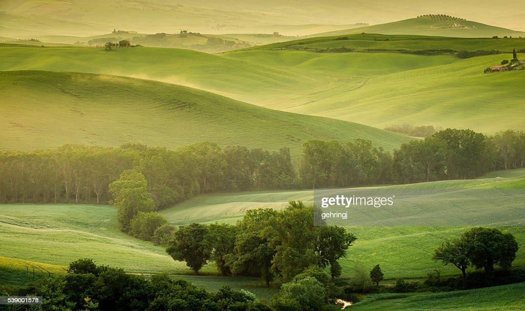 Landscape of Tuscany : Stock Photo