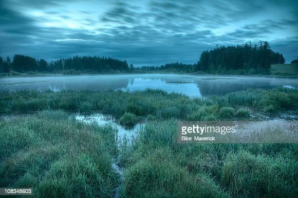 Landscape overview of Misty Lake at dusk