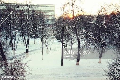 landscape path winter : Stock Photo