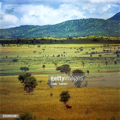 Landscape : Stock Photo