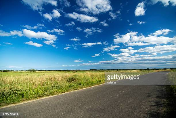 A landscape portrait of a road, green grass and blue sky