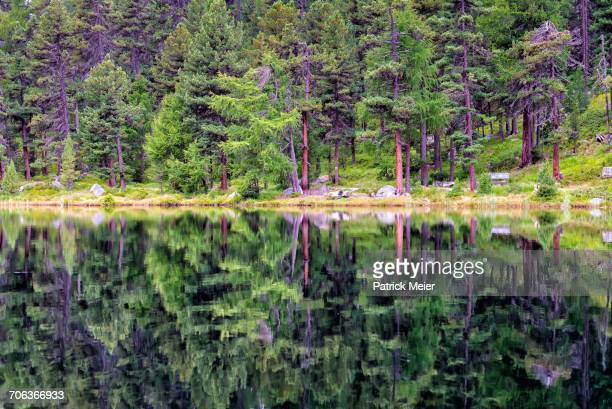 Landscape Reflections