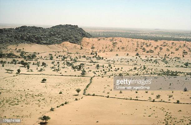 Landscape Sudan Kordofan Province Shrubs Cover Much Of The Sahel In Many Places Overgrazing Has Destroyed Shrubs And Grass And The Soil Blows Away