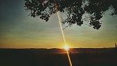 Field in sunrise time