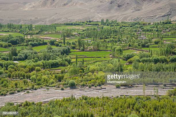 Landscape view at Matho Monastery