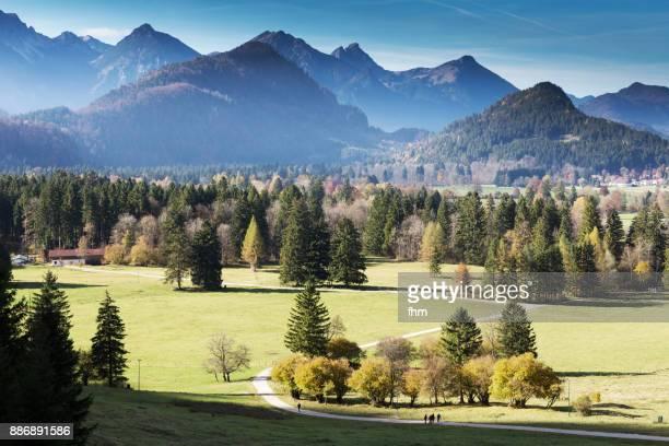 Landscape view in the Allgäu (Allgäu/ Bavaria/ Germany)