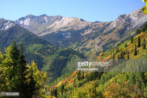 Landscape view of an autumn mountain