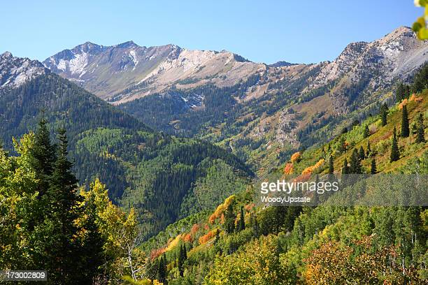 Landscape view of an autumn mountain