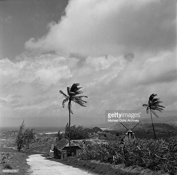 A landscape view of house and windmill in Bridgetown Barbados