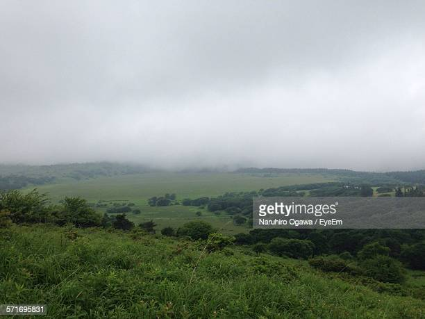 Landscape View On Foggy Day