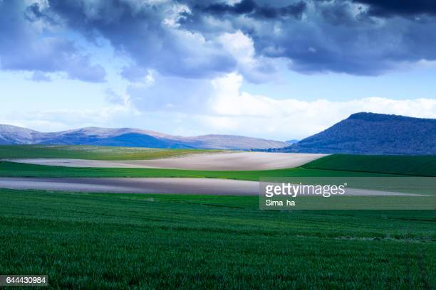 Landscape wiht green field. Spain