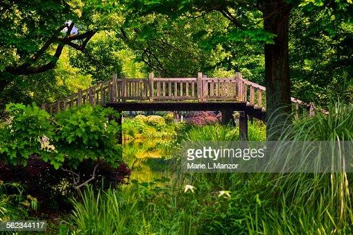 Landscape with wooden bridge