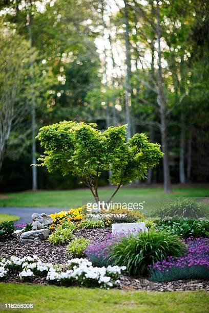 Paesaggio giardino