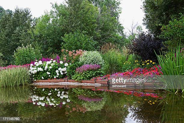 Landscaped Garden Pond with Flower Reflections