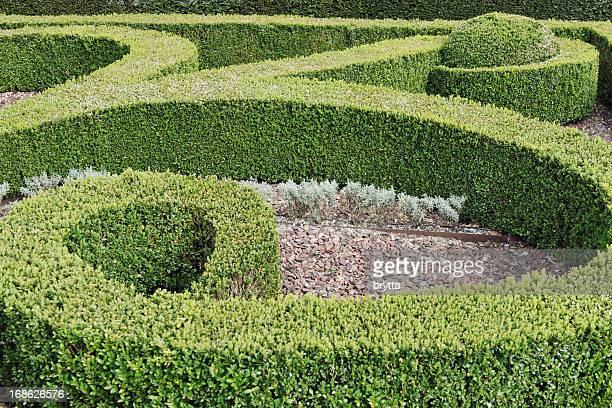 Gartenanlage mit Hecken mit buxus.