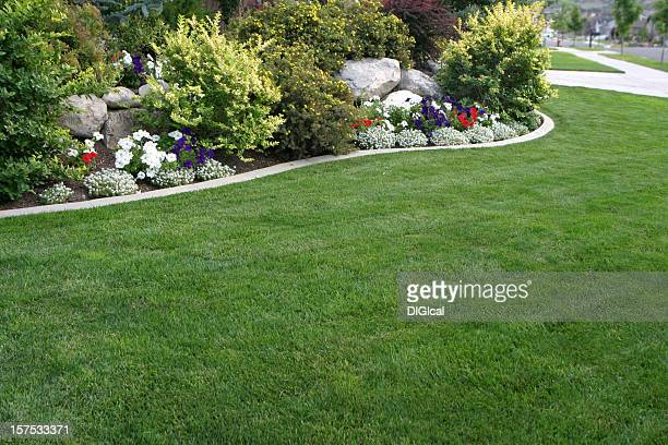 Cortile giardino