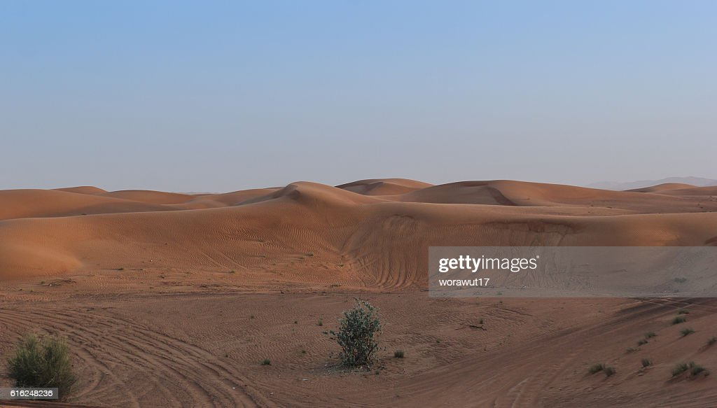 landscape,nature,desert : Stock Photo