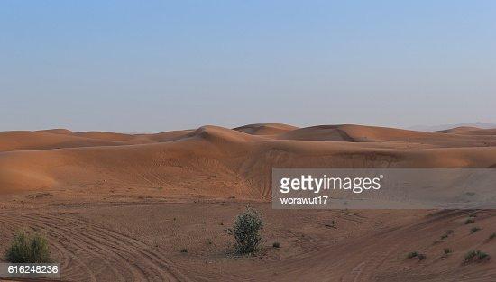 landscape,nature,desert : Foto stock