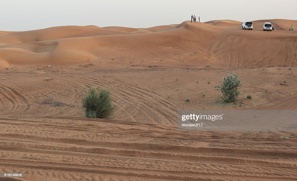 landscape,nature,desert : Stock Photo