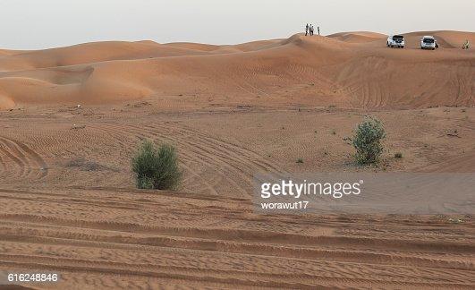 landscape,nature,desert : Foto de stock