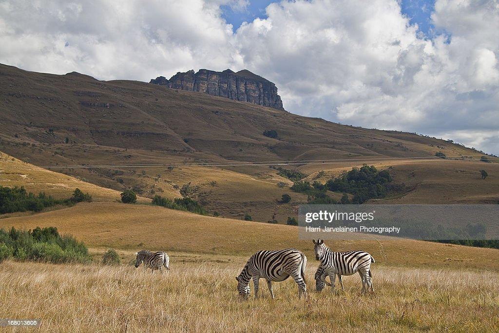 Landscapes in Kwazulu-Natal